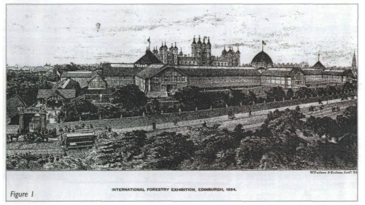 1884 forestry expo at donaldsons
